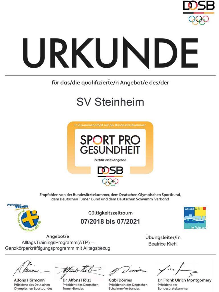 sport-pro-gesundheit-zertifikat-bk-atp-ganzkörperkräftigung-mit-alltagsbezug_2x