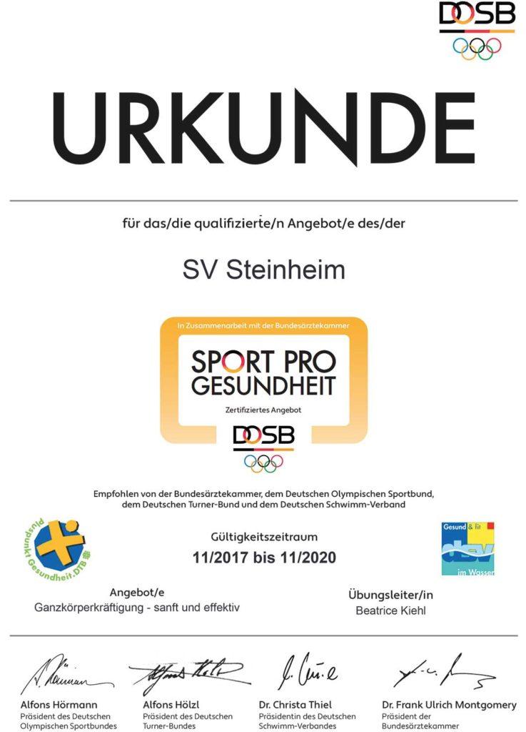 sport-pro-gesundheit-zertifikat-bk-ganzkörperkräftigung-sanft-und-effektiv_2x