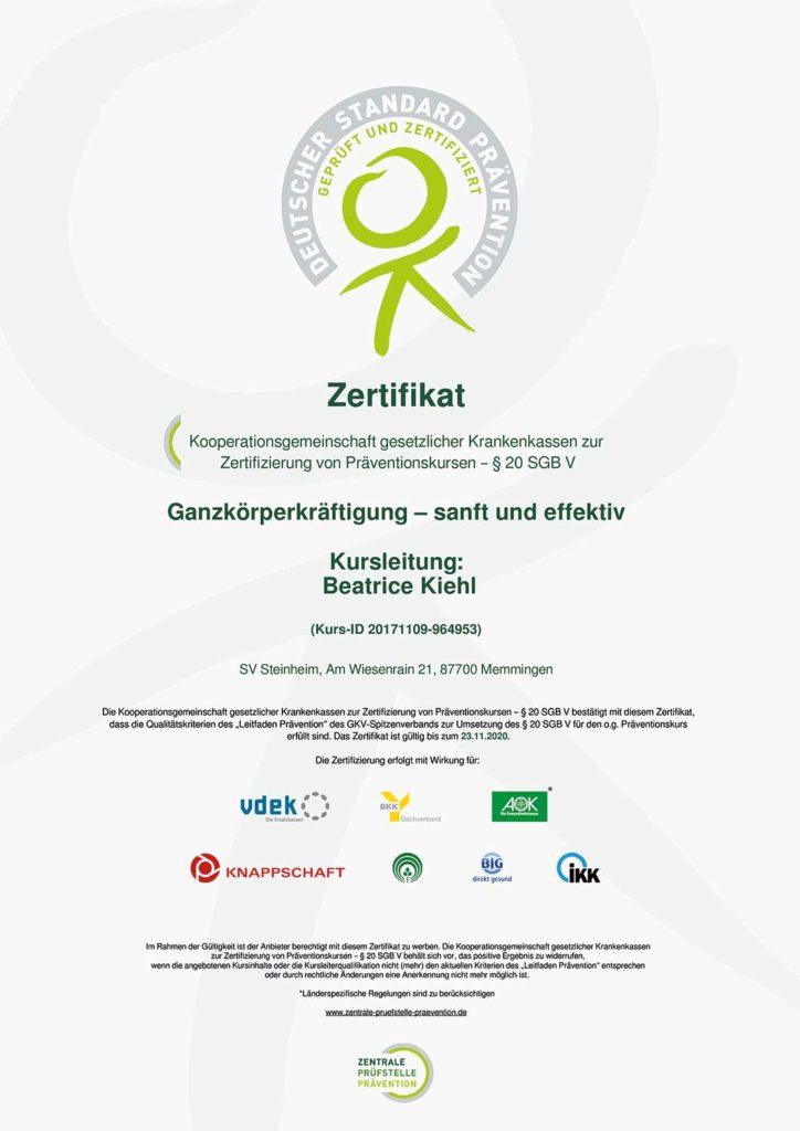 zpp-zertifikat-bk-ganzkörperkräftigung-sanft-und-effektiv_2x